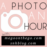 Photo an Hour (Link Up!): 1/29/14