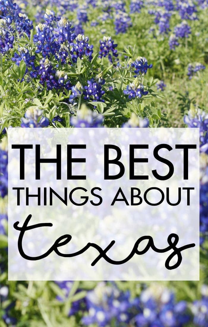 Bluebonnets, BBQ, NASA and fresh spring water are just a few awesome things about Texas! Come see what else made my list! ‪#‎ad‬ ‪#‎OzarkaCountry‬