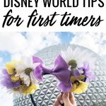 Houston blogger Meg O. on the Go shares 10 Disney World tips for first timers
