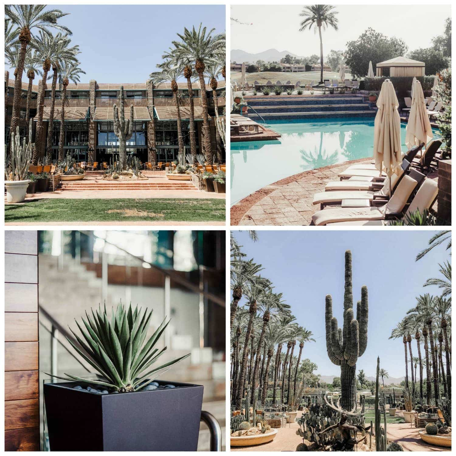 Hyatt Regency Scottsdale Resort at Gainey Ranch - as seen in Scottsdale travel guide by Meg O. on the Go