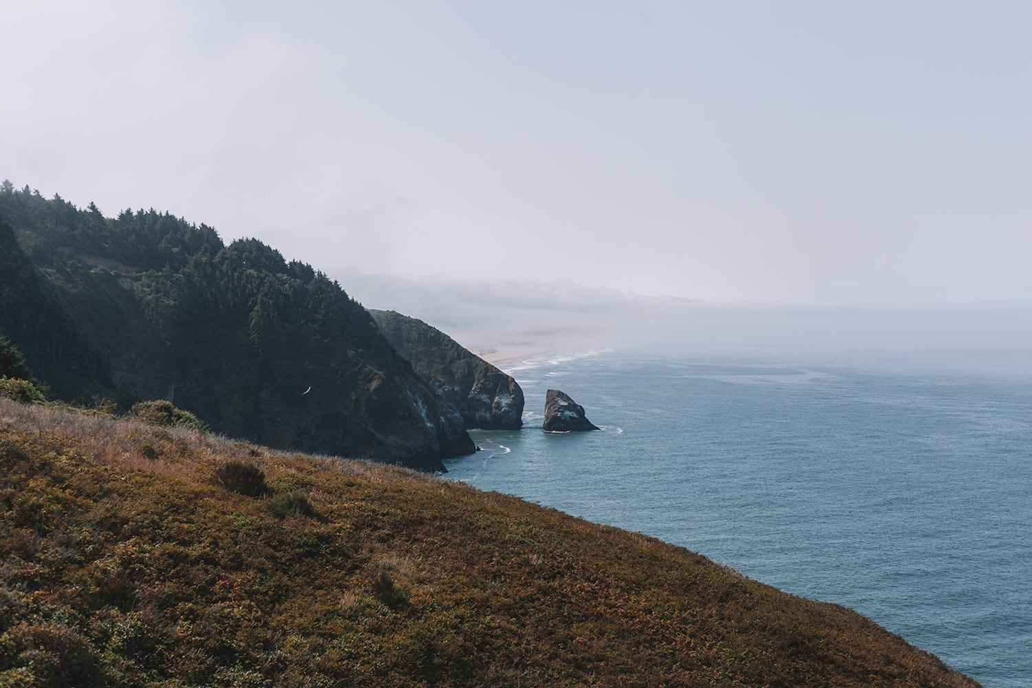 The beautiful Oregon Coast on a road trip through the Pacific Northwest - travel guide by lifestyle blogger Meg O. on the Go