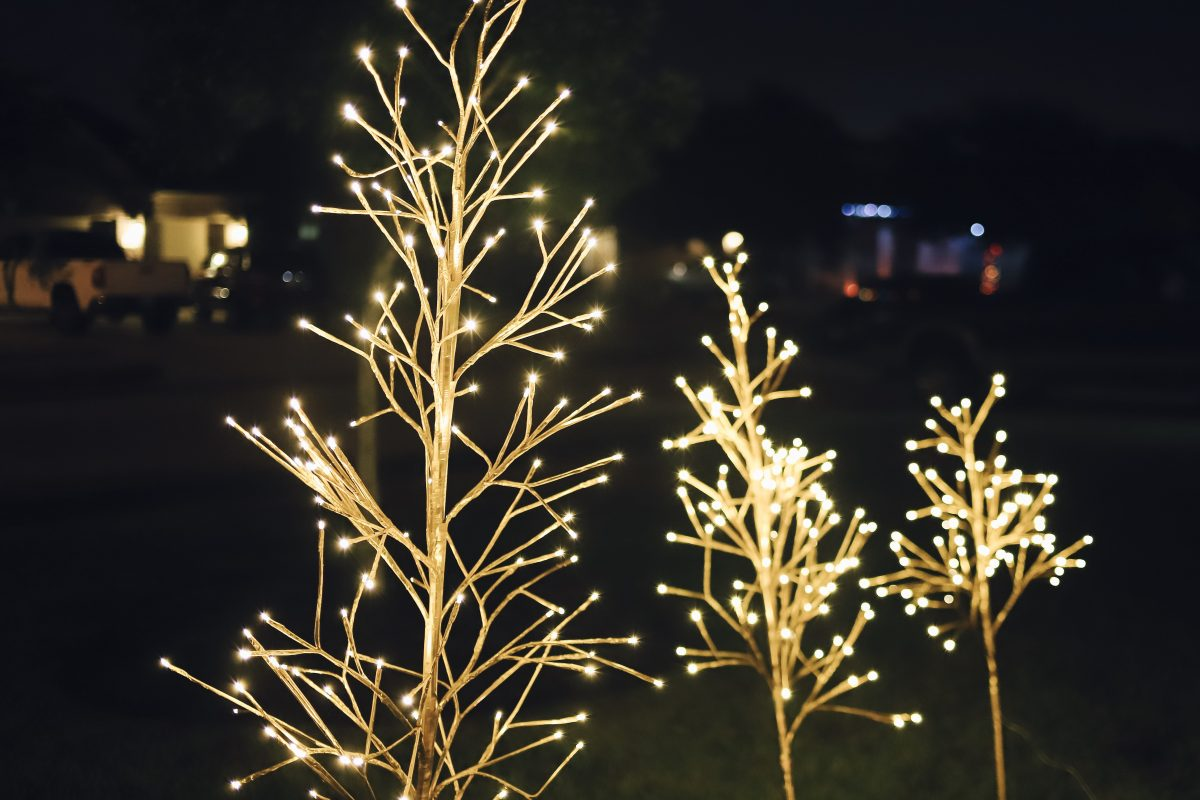 Balsam Hill Golden Glow LED Trees