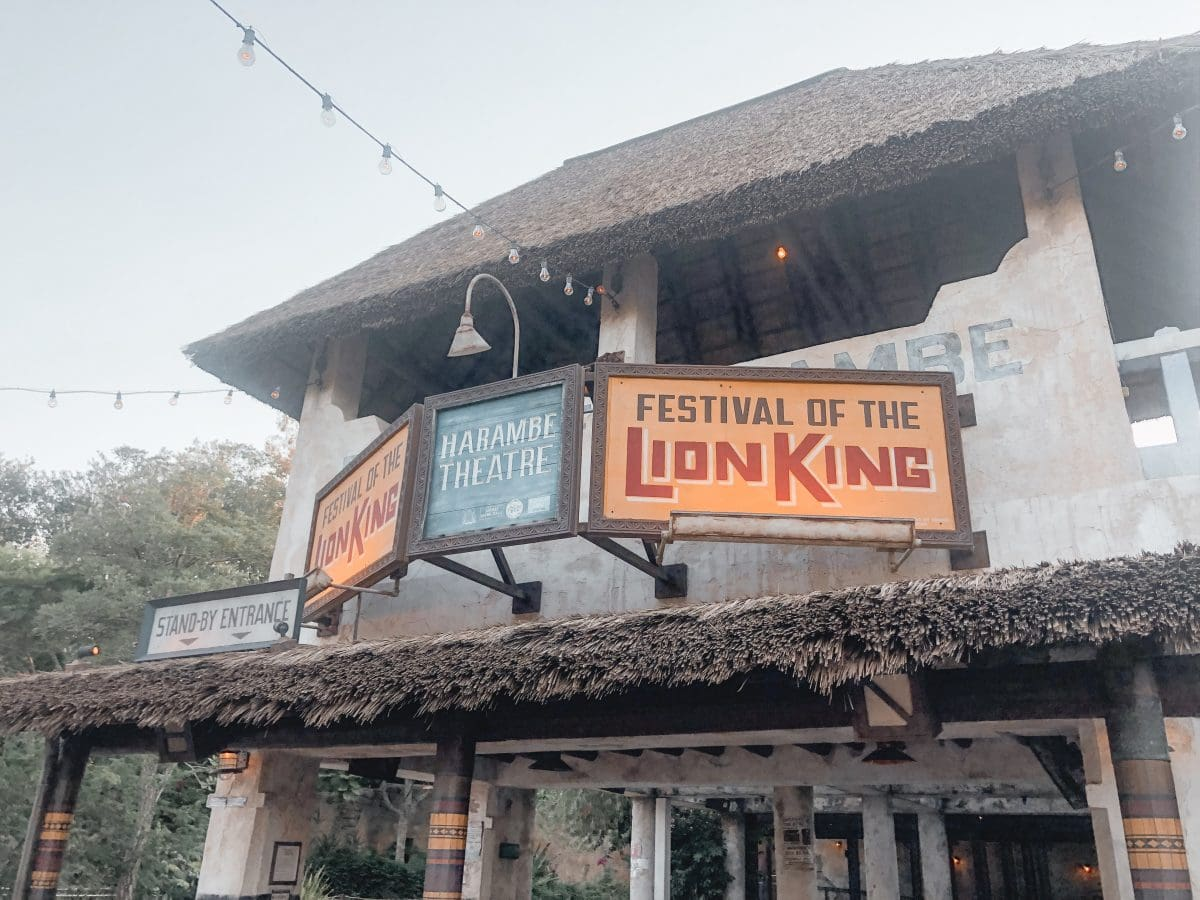 Houston lifestyle blogger Meg O. on the Go shares her favorite Disney World for kids experiences for preschoolers and up - Festival of the Lion King in Animal Kingdom
